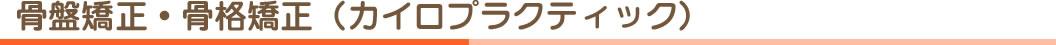 骨盤矯正・骨格矯正(カイロプラクティック)